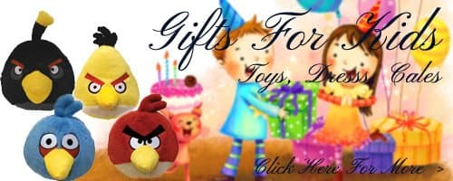 Birthday Gifts For Kids in Ahmednagar