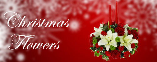 Christmas Flowers to Mohali