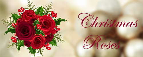 Send Christmas Roses in Mohali