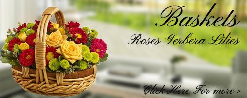 Flowers Arrangement to Roorkee