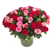 Flowers to India. Red Pink Roses in Vase 50 Flowers to India Online