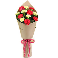 Get Rakhi and Pink Yellow Carnation Bouquet 10 Flowers to India
