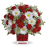 Send White Gerbera Red Carnation Vase 24 Rakhi Flowers to India