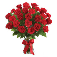 Order forRakhi and Red Rose Carnation Vase 24 Best Flowers to India
