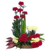 Same Day Flowers Online in India