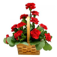 Place Order for Mother's Day Flowers to India