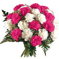 Order Pink White Carnation Bouquet 12 Flowers to India on Rakhi