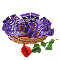 Online 12 Dairy Milk Chocolate Basket With 1 Red Rose Bud. Diwali Gifts in India