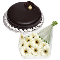 Send 12 White Gerbera 1 Kg Chocolate Truffle Cake in India Online
