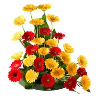 Flowers to India : Red Yellow Gerbera