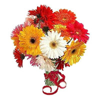 Fresh Flowers to India - Mix Gerbras to India