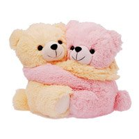 Same Day Gifts Delivery Bhilai : Teddy Day Gifts in Bhilai