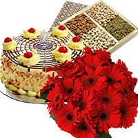 Shop for Best Gifts Delivery in India comprising 500 gm Butter Scotch Cake 12 Mix Gerbera Bouquet