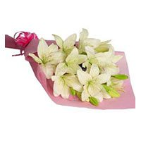 Birthday Flowers to India : Pink White Lily