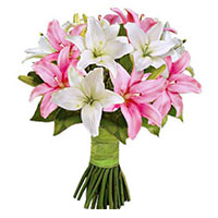 Father's Day Flower Delivery in India :  Pink White Lily