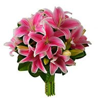 Valentine's Day Flowers to India : Pink Lily to India