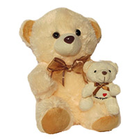 Send Gifts to India - Teddy Day Gifts