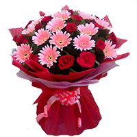 Send Flowers in Surat