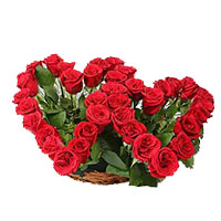 Deliver Rose Day Flowers to India