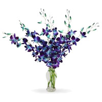 Buy Online Christmas Flowers to India