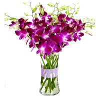 Online Housewarming Flowers to India