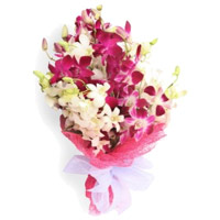 Orchids Flower Delivery in India