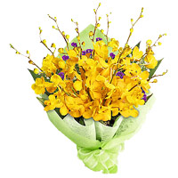 Same Day Flowers Delivery to India