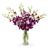 Online Order for Fresh Flowers to India
