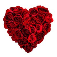 Place Order for Red Roses Heart Arrangement for Mother's Day