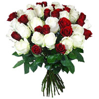 Online Roses in India