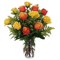 Send Holi Roses to India Online