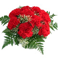 Flowers to India : Valentines Day Flowers to India
