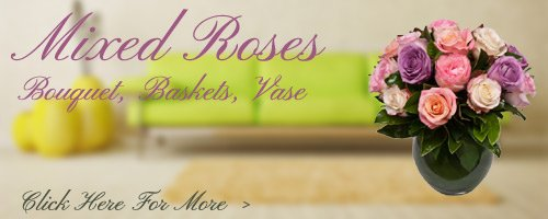 Mixed Roses to Roorkee