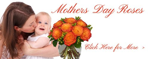 Mother's Day Roses to Moradabad