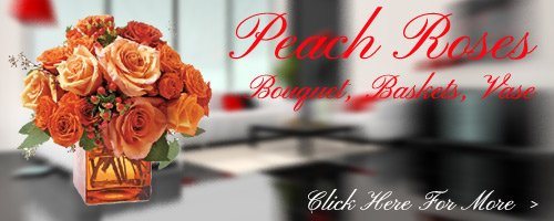 Peach Roses to Vadodara