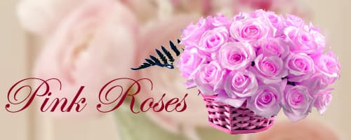 Pink Roses to India