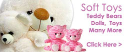 Send Gifts to Delhi, Soft Toys to Sashtri Nagar