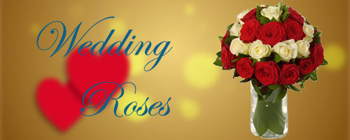 Wedding Roses to India